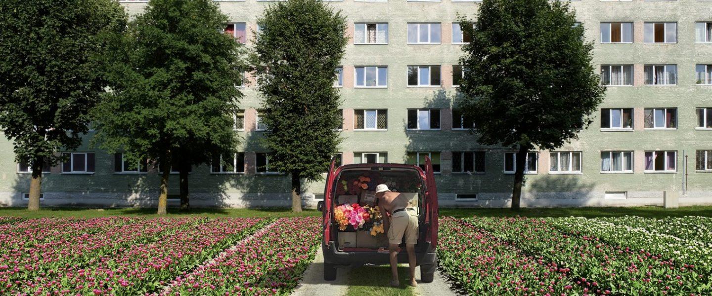 Tallinna Fotokuu: Little Narva