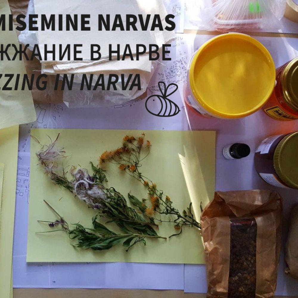Buzzing in Narva | Johanna Richter & Marcell Hajdu